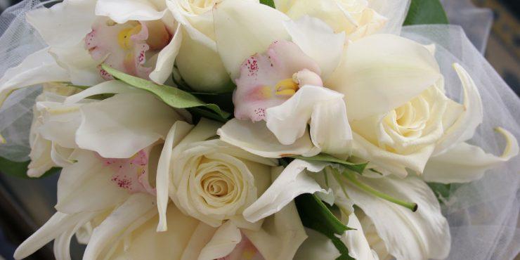 Blake Roses